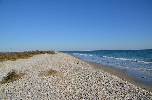 plage aresquiers frontignan 2